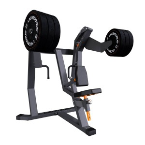 Vertical Row Club Line Lacertosus® Gym accessories and clothing