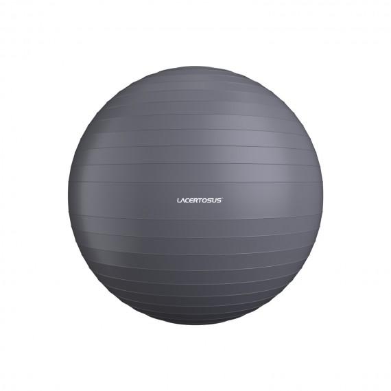 Swiss Ball/ Gym Ball 65 cm
